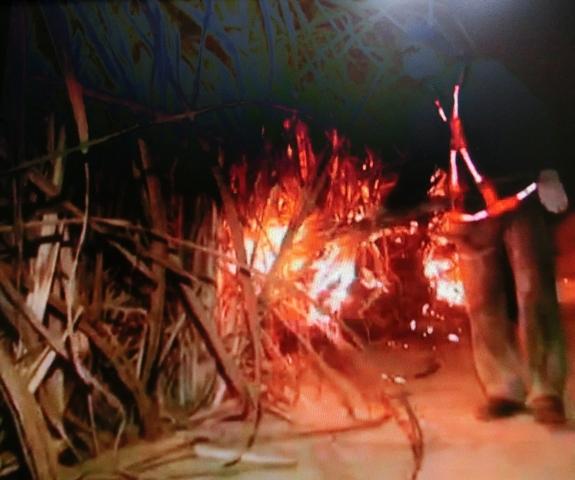 lebendig verbrennen bilder