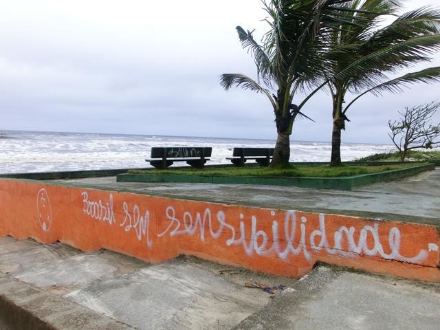 brasilsensibilitat13.jpg