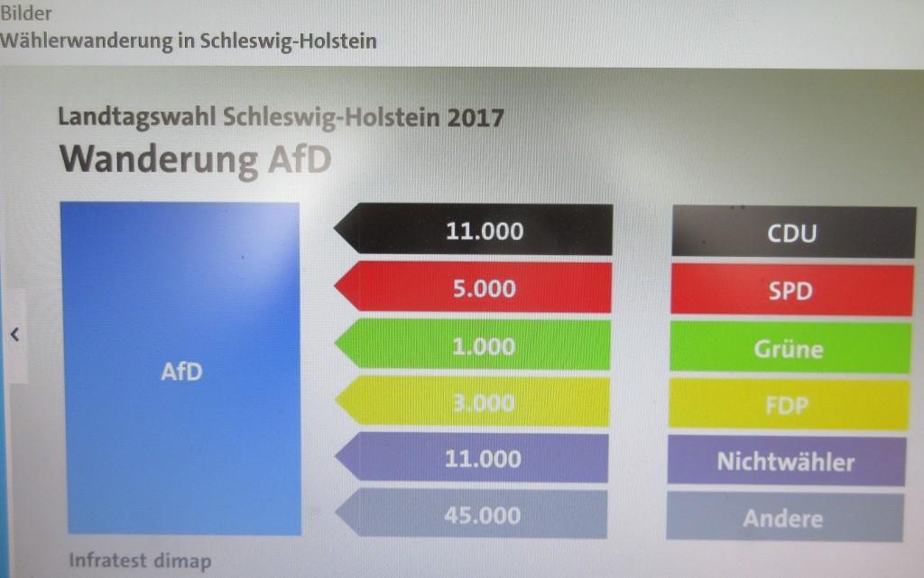AfDWählerwanderungSH17