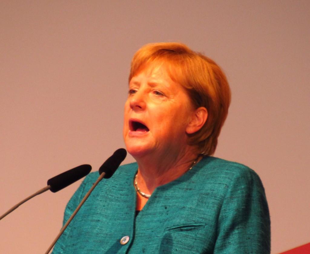 MerkelAp31