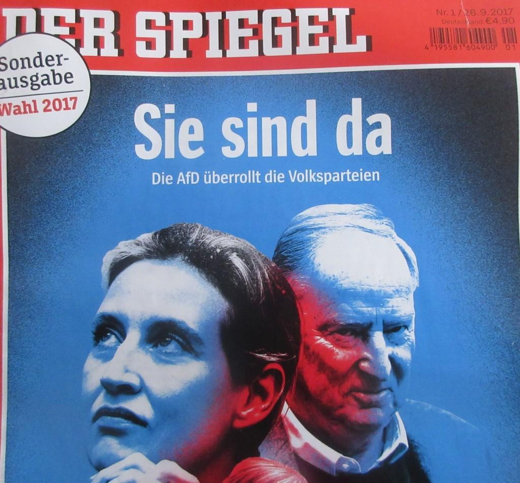 SpiegelAfDWahl17