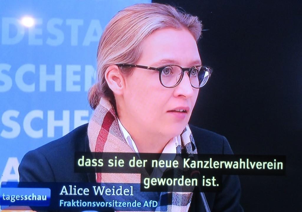 AfDWeidelKanzlerwahlverein18