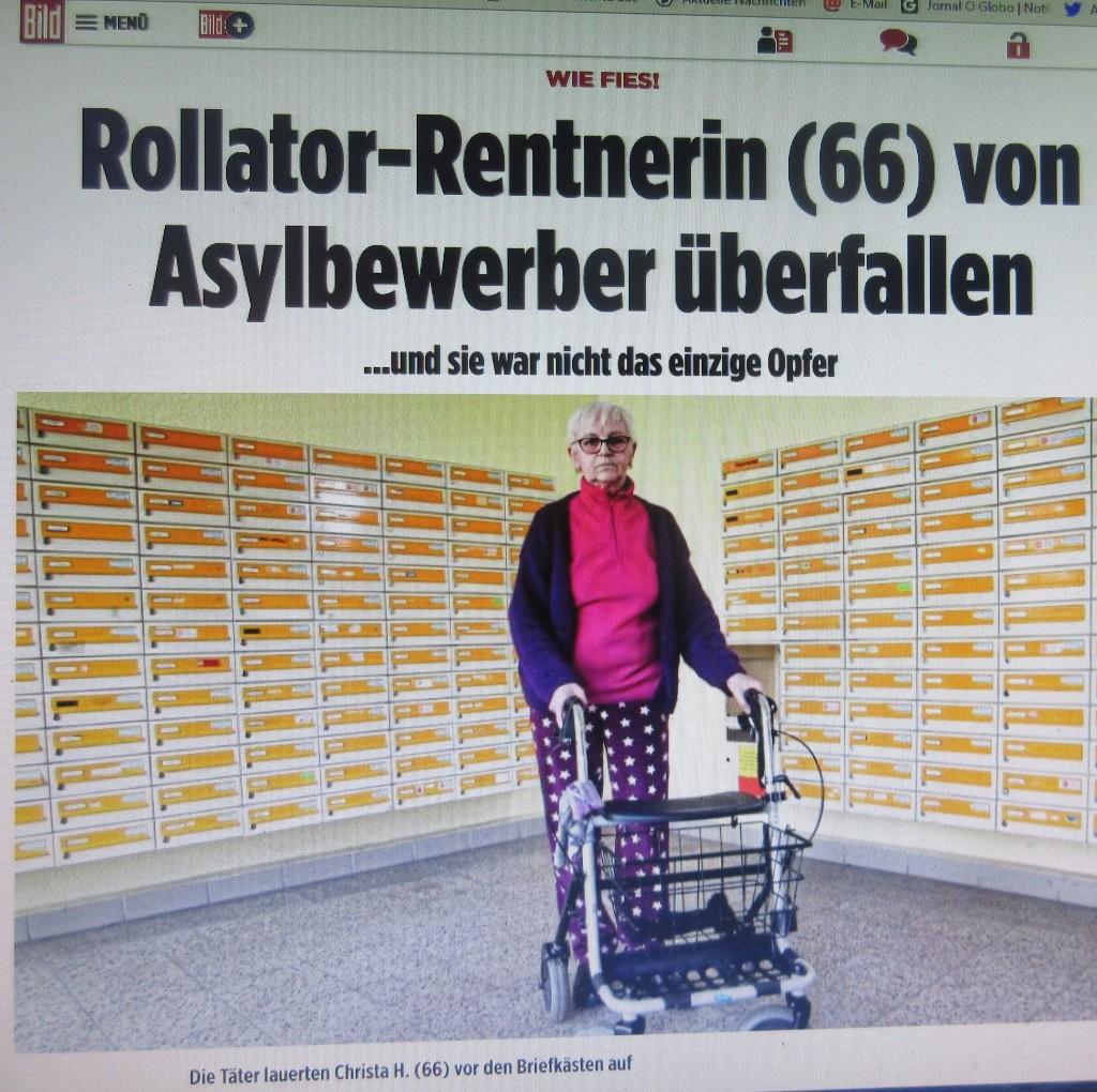 DresdenRollator1