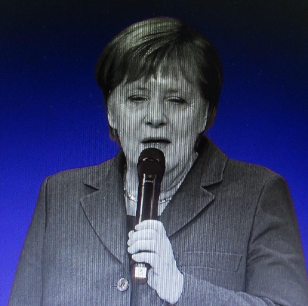 MerkelChem1