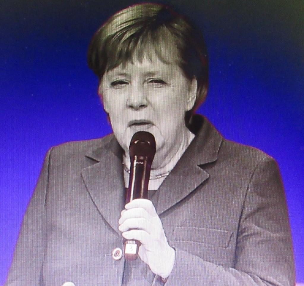 MerkelChem2