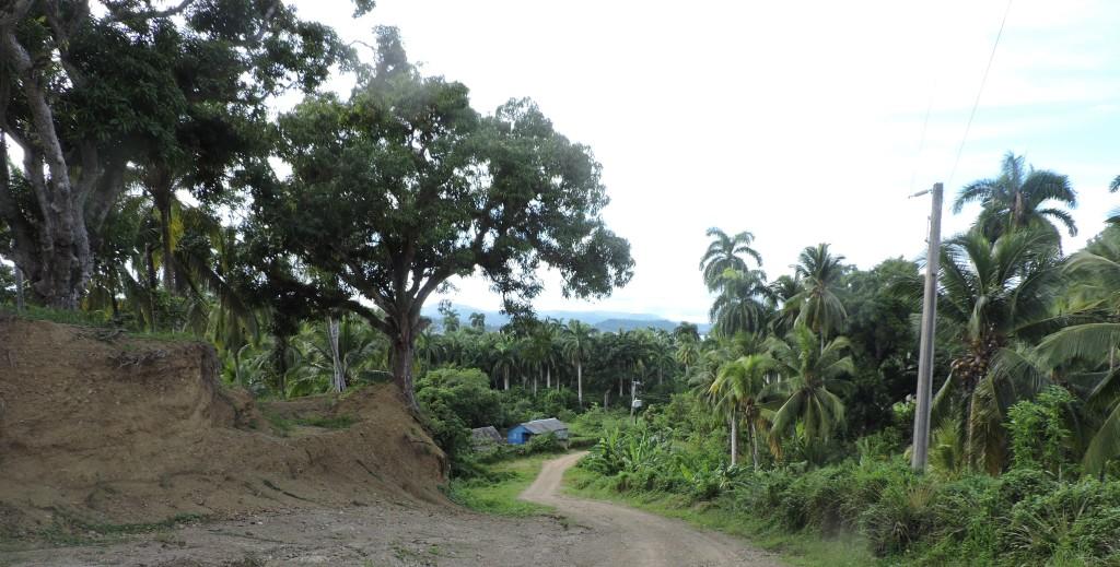 Baracoa1